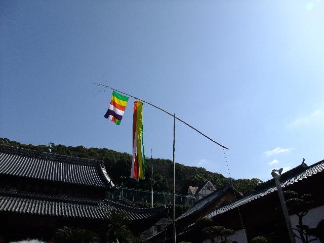 100228koufukuji02