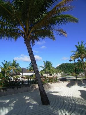 071116_palau_prr_beach_03