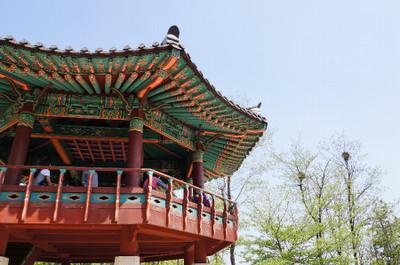 130510_dongtan05