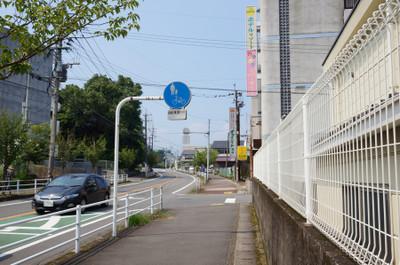 150801_ishigakibaru05